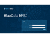 BlueData EPIC Software